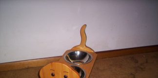 Top 10 Best Pet Elevated Raised Bowls Reviews